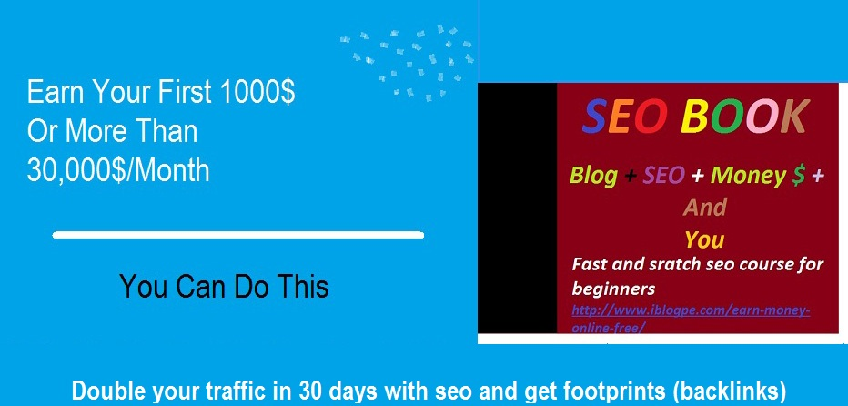 Make money 5000$ per month by getting target traffic with SEO