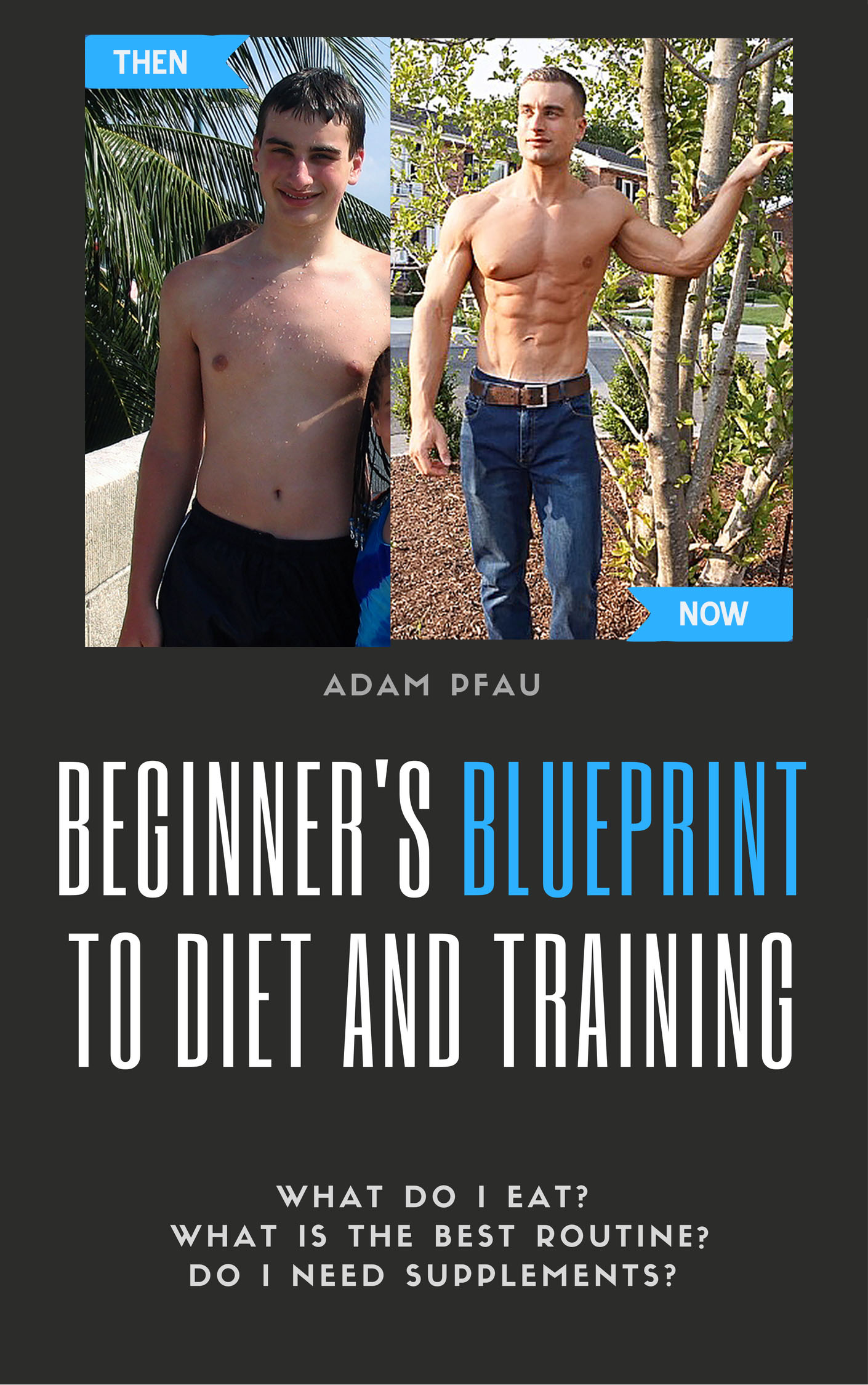 Beginners blueprint to diet and training malvernweather Images