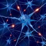 Adhd Binaural Beats Brain Wave Therapy - Mp3 Audio Files