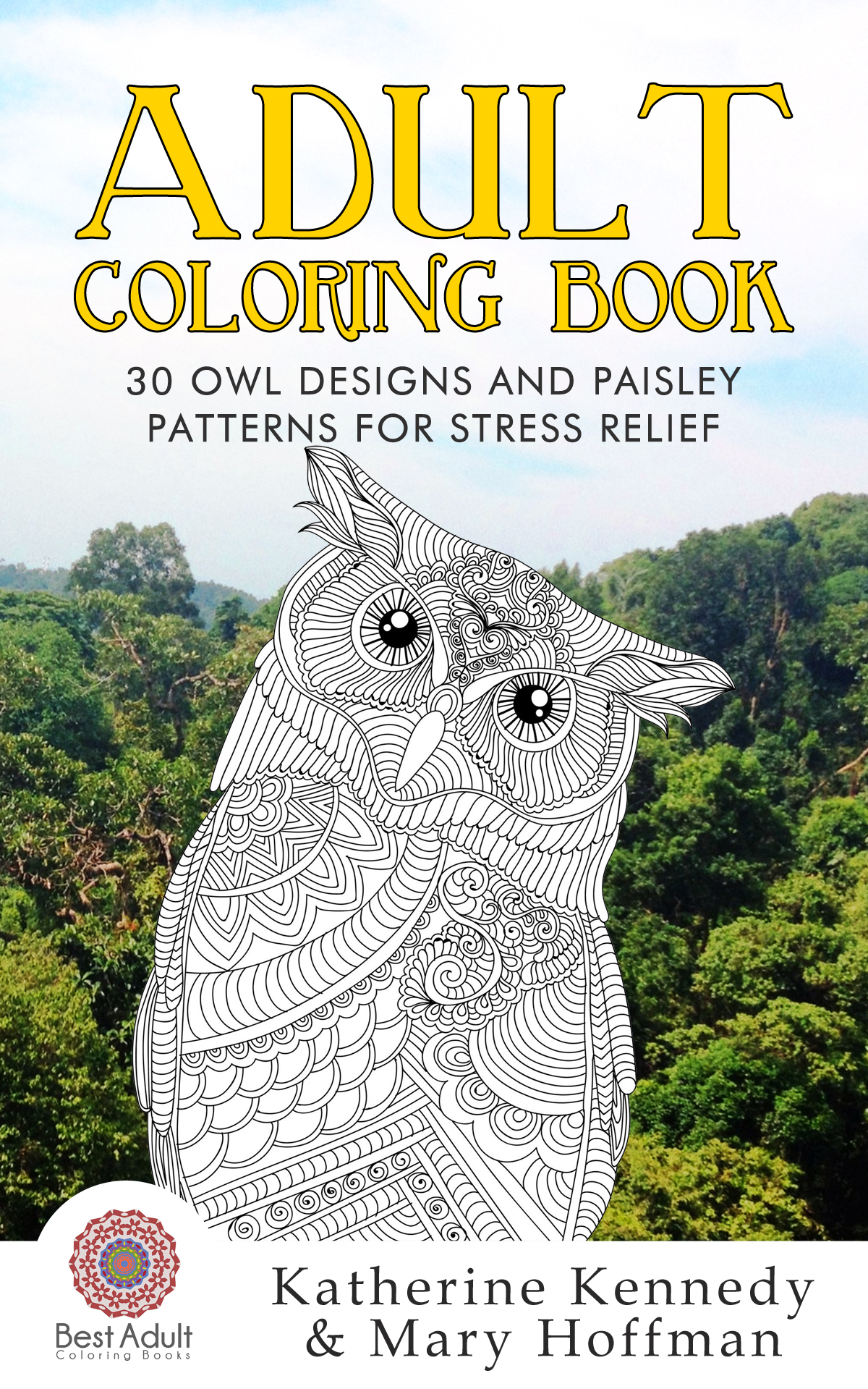 Adult coloring book: 30 owl designs and paisley patterns for stress relief