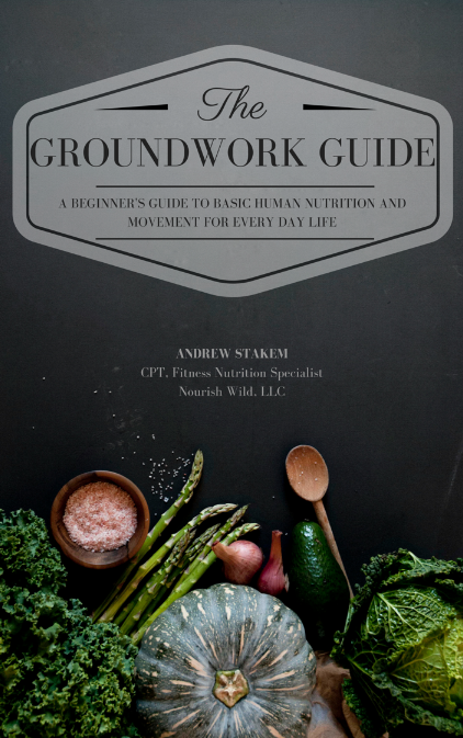 Groundwork guide nourish wild the groundwork guide ebook fandeluxe Images