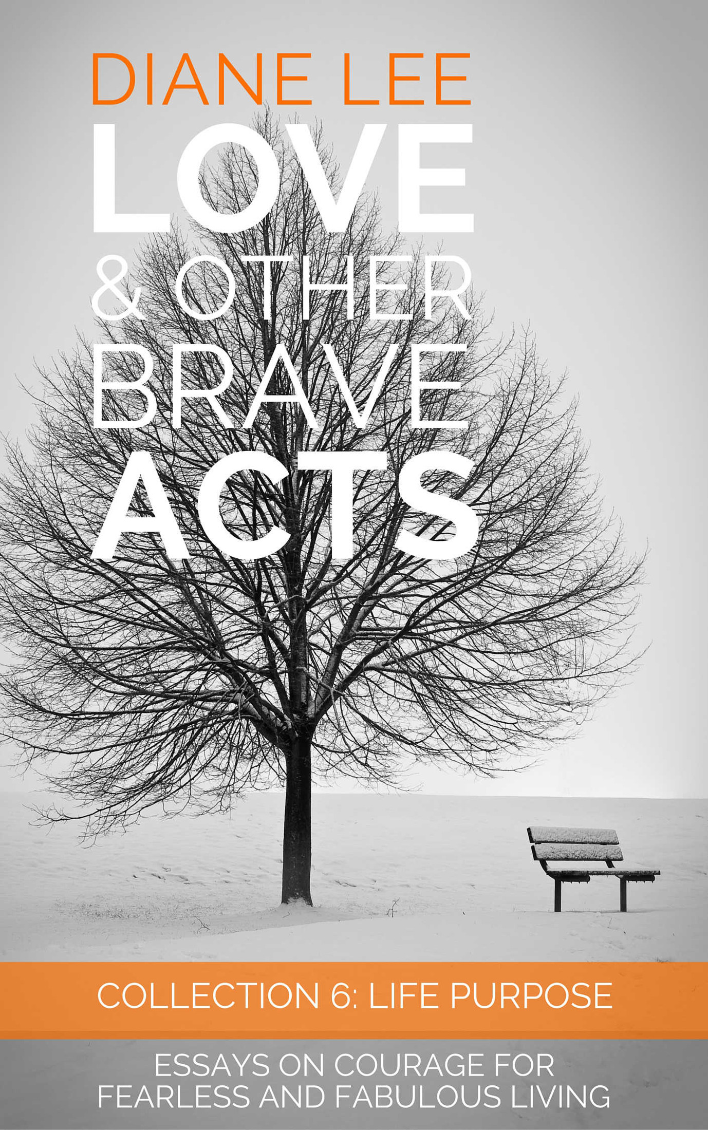 an act of bravery essay